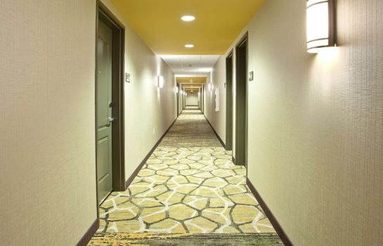 Informacja Hampton Inn - Suites - Minneapolis-Downtown MN