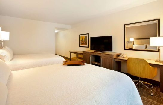 Chambre Hampton Inn - Suites - Minneapolis-Downtown MN