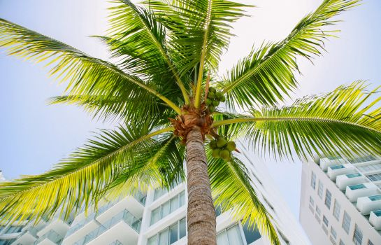 Außenansicht thesuites MIAMI South Beach