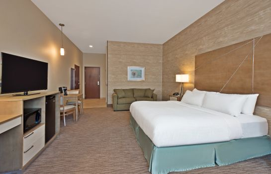 Room Holiday Inn Express & Suites HARRISBURG S - NEW CUMBERLAND