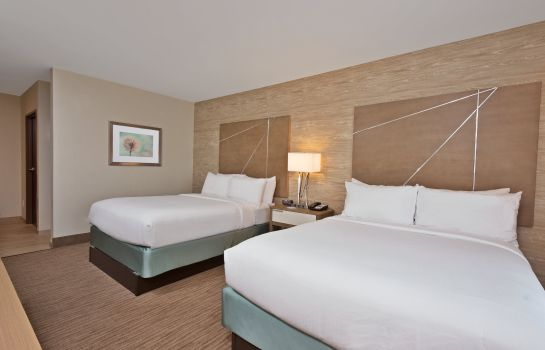 Kamers Holiday Inn Express & Suites HARRISBURG S - NEW CUMBERLAND