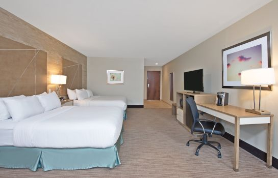 Zimmer Holiday Inn Express & Suites HARRISBURG S - NEW CUMBERLAND