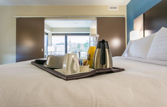 Info Holiday Inn & Suites CHATTANOOGA DOWNTOWN