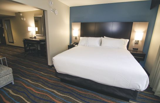 Zimmer Holiday Inn & Suites CHATTANOOGA DOWNTOWN