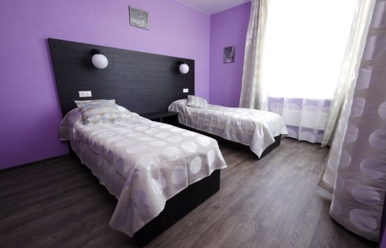 Double room (standard) Kosmos