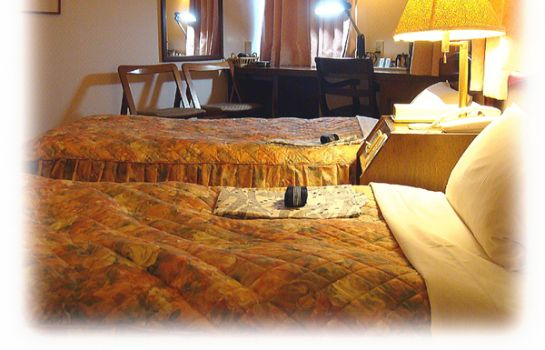 Double room (standard) Imabari Station Hotel