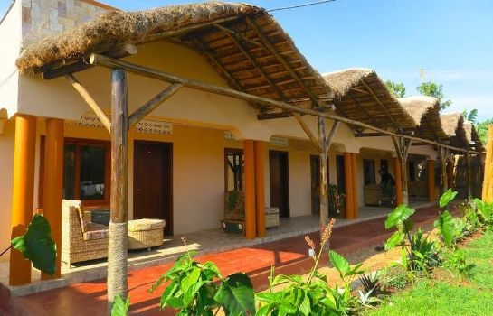 Hall Gorilla African Guest House