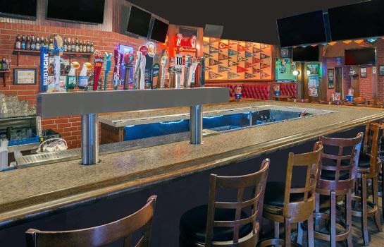 Hotel-Bar Ramada by Wyndham Miami Springs/Miami International Airport