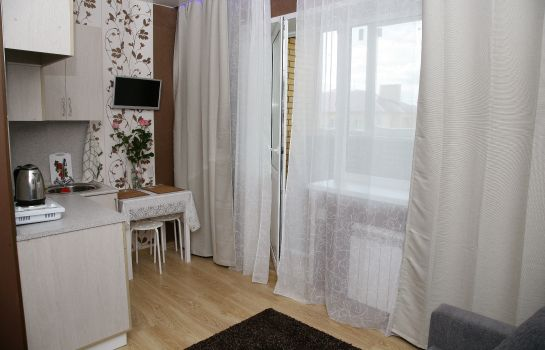 Double room (standard) Kvartirkin mini-hotel