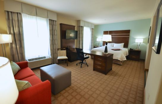 Suite Hampton Inn and Suites Hutto