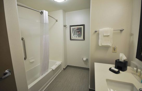 Kamers Hampton Inn and Suites Hutto