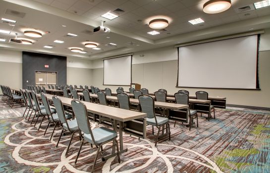 Sala konferencyjna Holiday Inn & Suites PEORIA AT GRAND PRAIRIE