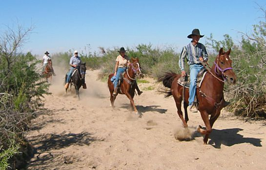 Bild Stagecoach Trails Guest Ranch