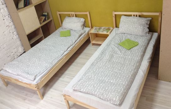 Double room (standard) HOSTEL VOZDUH Хостел Воздух