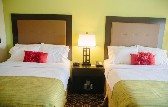 Chambre Holiday Inn MURFREESBORO