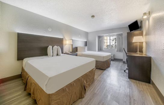 Suite Junior The Floridian Hotel and Suites