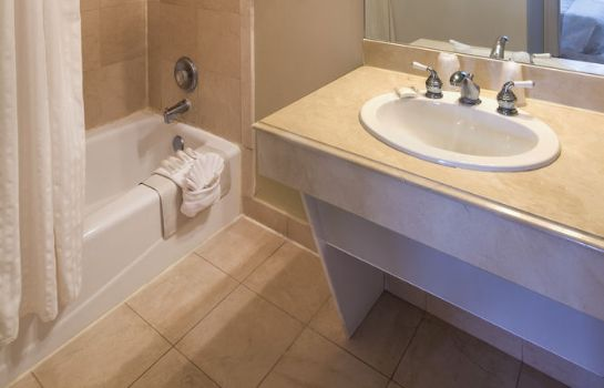 Bagno in camera Paradise Inn Key West-Adults Only