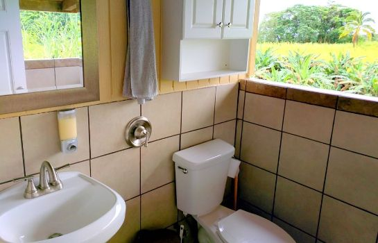 Bagno in camera Hamakua Guest House and Camping Cabanas