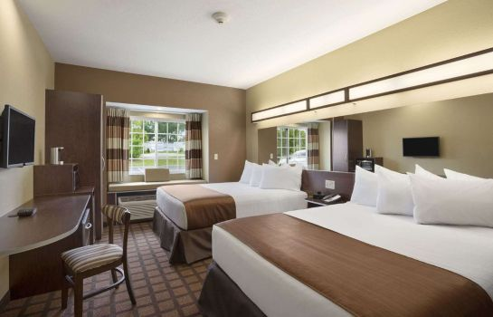 Suite Microtel Inn & Suites by Wyndham Carrollton