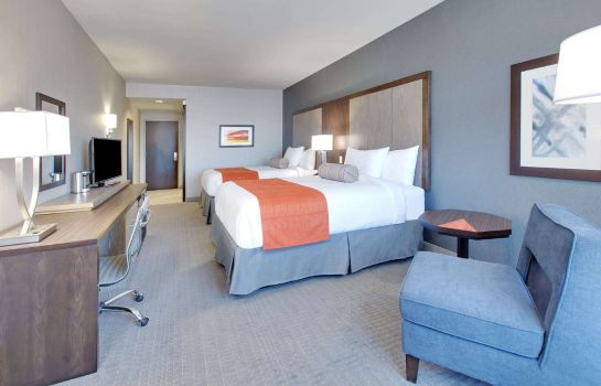 Room Wingate by Wyndham San Angelo