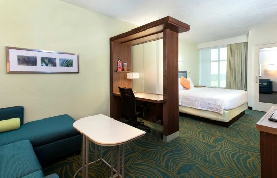 Zimmer SpringHill Suites Orlando at Flamingo Crossings/Western Entrance