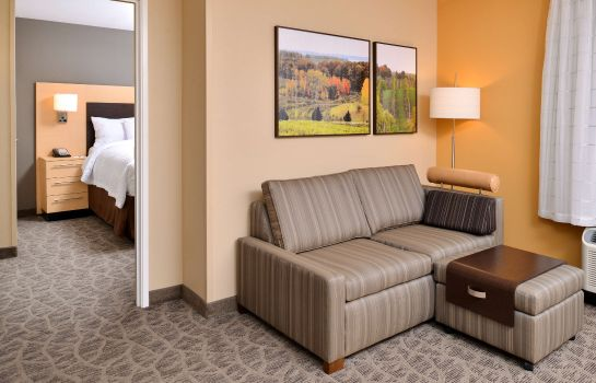 Zimmer TownePlace Suites Detroit Commerce