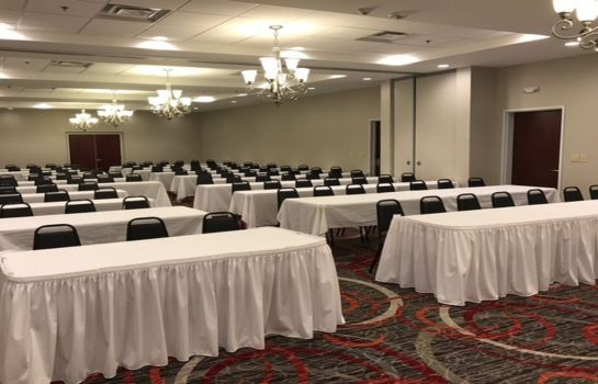 Sala congressi Holiday Inn & Suites LAFAYETTE NORTH