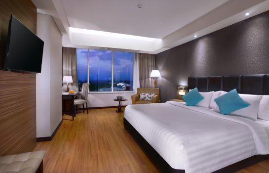 Double room (standard) The Alana Hotel & Convention Center - Solo