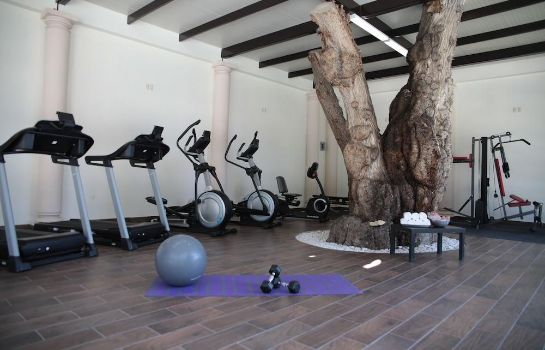 Sports facilities Hotel Real del Bosque