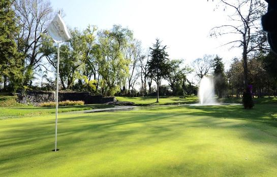 Golf course Hotel Real del Bosque