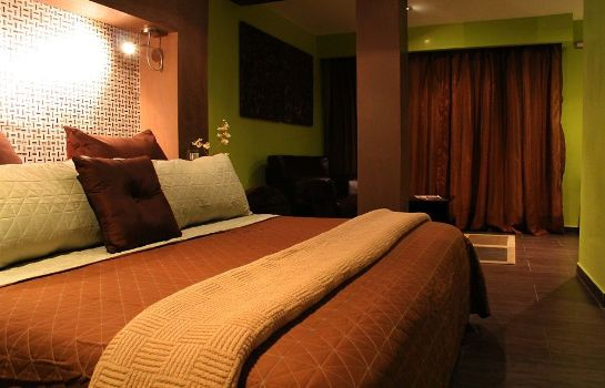 Single room (standard) The Panams Hotel Boutique