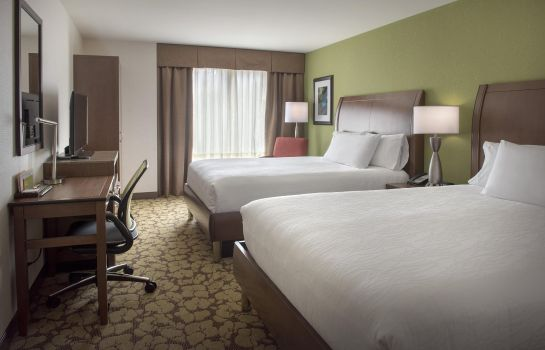 Kamers Hilton Garden Inn Chicago-North Loop