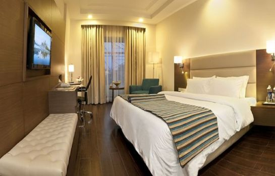 Double room (standard) Howard Plaza The Fern-An Ecotel Hotel Agra