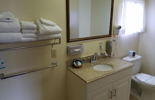 Bagno in camera Lone Oak Lodge