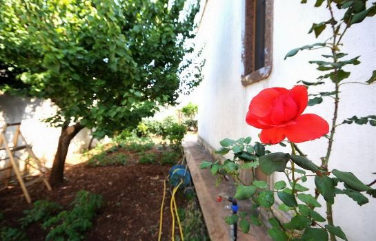 Ambiente Santu Nicola - Bed and Breakfast