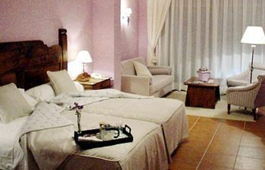Single room (standard) Hotel-Spa-Sant Ferriol