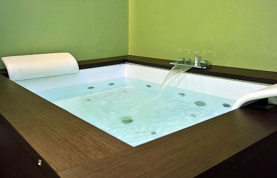 Whirlpool Hotel The Originals Naturalis Bio Resort & Spa (ex Relais du Silence)