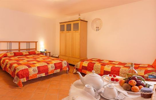 Single room (standard) Bed and Breakfast Cassiopea