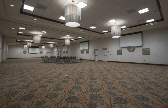 Conference room Hilton Garden Inn Bolingbrook I-55