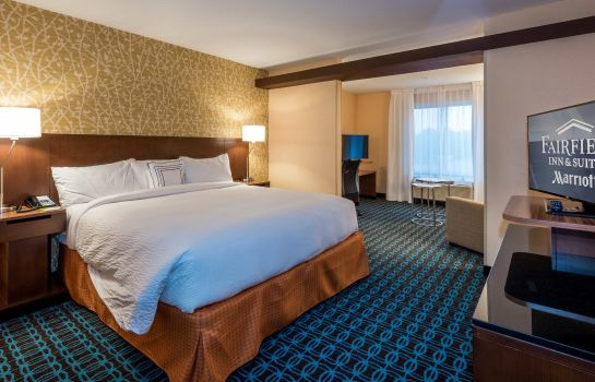 Chambre Fairfield Inn & Suites Enterprise