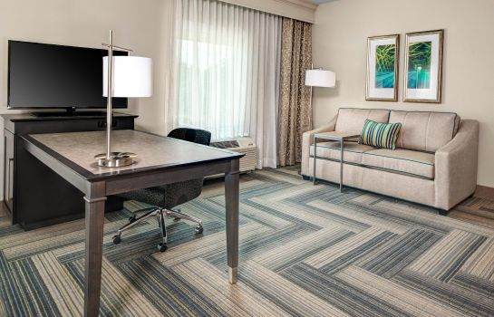 Suite Hampton Inn - Stes by Hilton Atlanta Perimeter Dunwoody