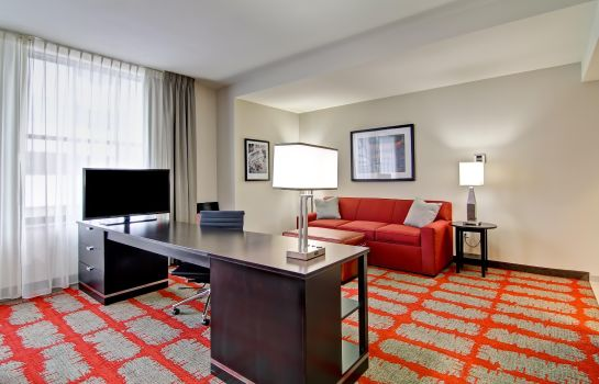 Suite Hampton Inn and Suites Cincinnati - Downtown