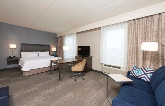 Suite Hampton Inn - Suites Grand Rapids Downtown