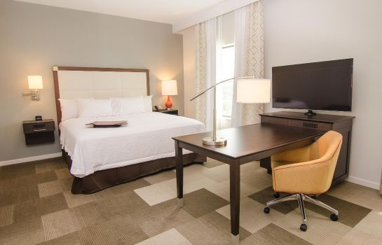 Suite Hampton Inn - Suites Houston North IAH TX