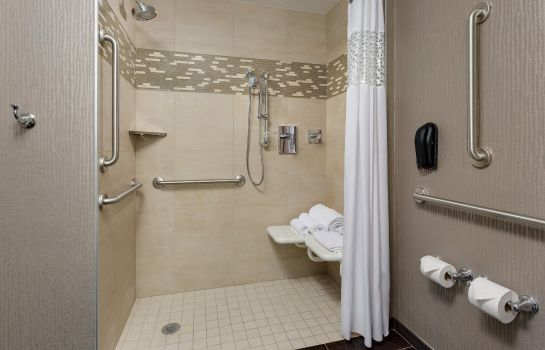 Zimmer Hampton Inn Manhattan-Times Square Central NY