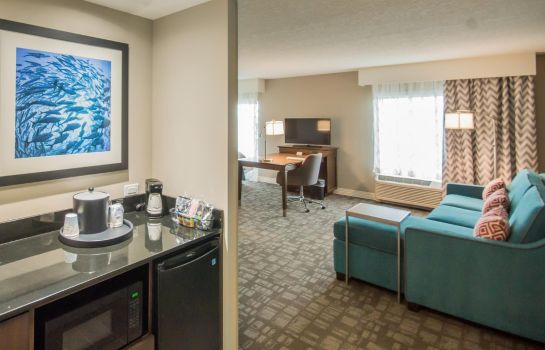 Chambre Hampton Inn - Suites Orlando at SeaWorld FL