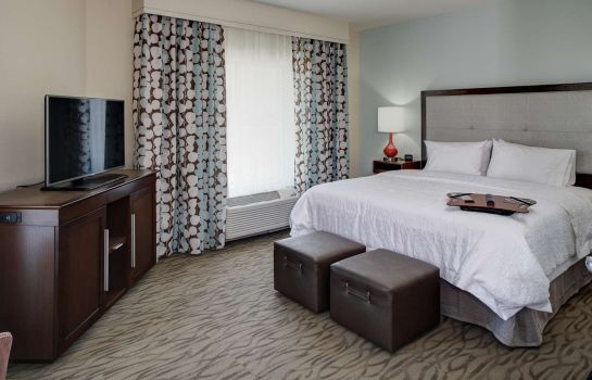 Suite Hampton Inn & Suites Vero Beach-Downtown FL