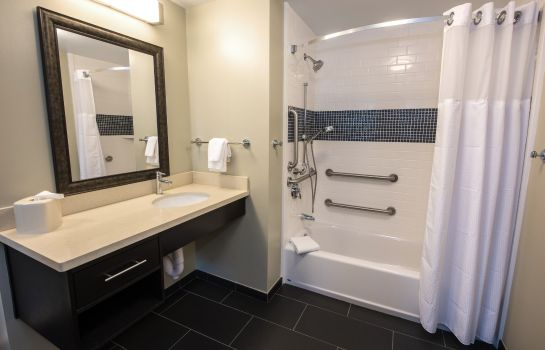 Zimmer Staybridge Suites ALBANY WOLF RD-COLONIE CENTER