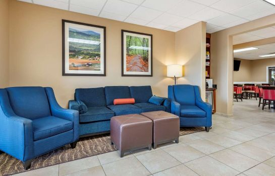 Hol hotelowy COMFORT INN AND SUITES BARNESVILLE - FRA