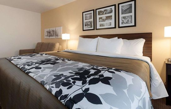 Suite Sleep Inn & Suites Carlsbad